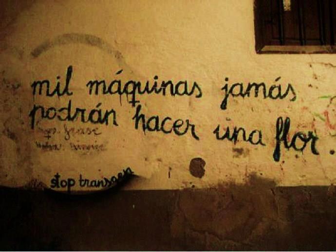 Frases De Amor Con Imagenes De Naturaleza: ~El Carpe Diem En Su Mejor Verso
