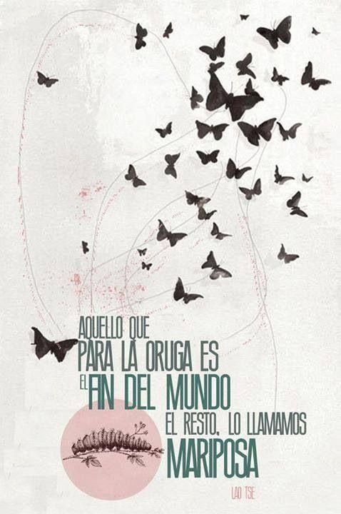 El Resto Lo Llamamos Mariposa El Carpe Diem En Su Mejor Verso