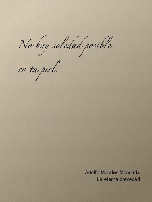 no hay soledad posible en tu piel